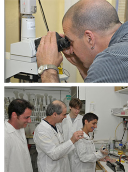 scientists cooperation in laboratory experiments